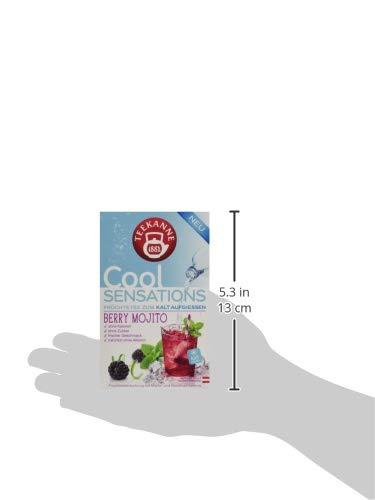 teekanne sterreich cool sensations berry mojito 5er pack 5 x 45 g tee sorten vergleich